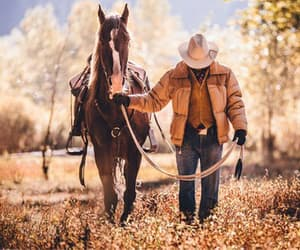 cowboy and horse image