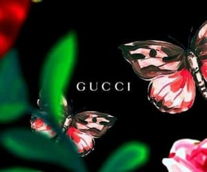 gucci, fondo de pantalla, and wallpapers image