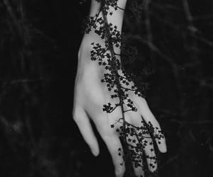 black, hand, and flowers image