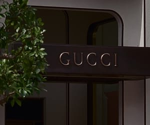 designer, fashion, and gucci image