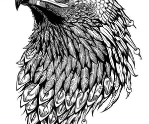 black, drawing, and eagle image