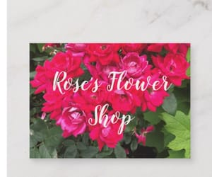 business, pink roses, and zazzle image