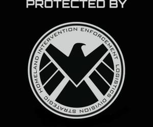 shield, Marvel, and background image