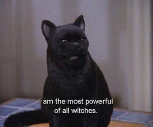 black cat, Witches, and sabrina the teenage witch image