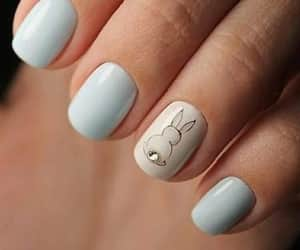 nails, bunny, and manicure image