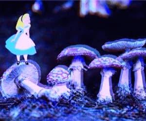 alice, mushroom, and wonderland image