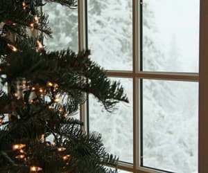 garland, winter, and spruce image