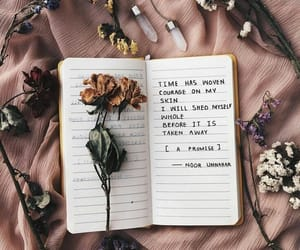aesthetic, quote, and roses image