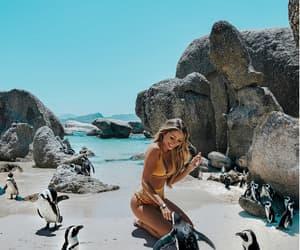amazing, beach, and fashion image