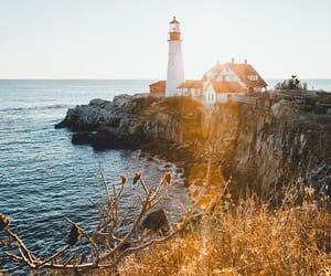 beautiful, explore, and light image
