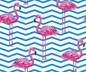 wallpaper, chevron, and animal image