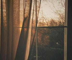 autumn, window, and aesthetic image