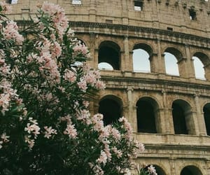 beautiful, building, and flowers image