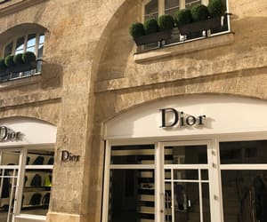 aesthetic, brand, and dior image