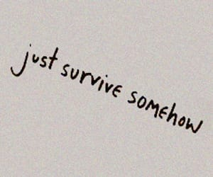 aesthetic, survive, and quotes image