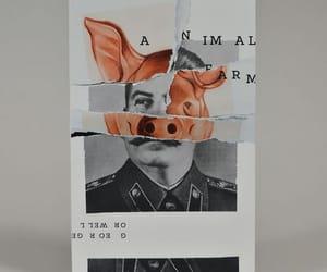 animal farm, book, and animals image