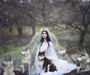 wolf, Queen, and fantasy image
