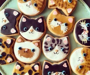 cat, Cookies, and food image