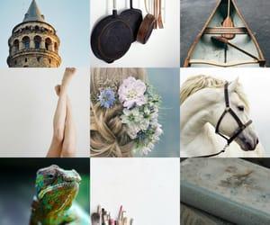 aesthetic and rapunzel image