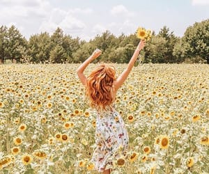 freedom and sunflower image
