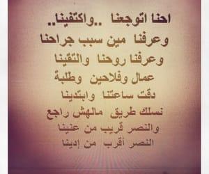 arabic, motivation, and 25 يناير image