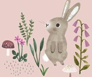 conejos, rosa, and bolita image
