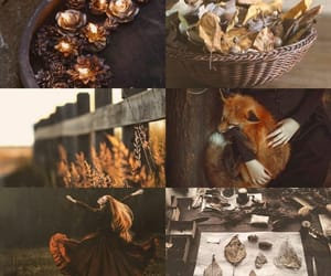 pagan, aesthetic, and autumn image