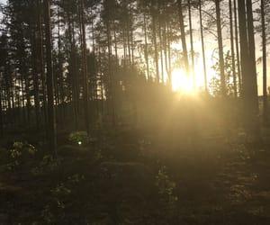 finland, green, and magic image