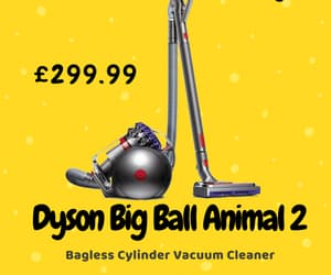 dyson, dyson vacuum cleaner, and big ball animal 2 image