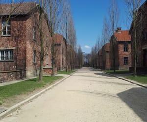 auschwitz, Krakow, and memorial image