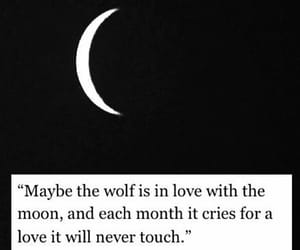 moon, quotes, and wolf image
