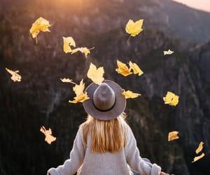 nature, autumn, and fall image