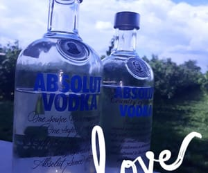 absolut, true, and two image