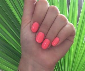 nail, nails, and pink image