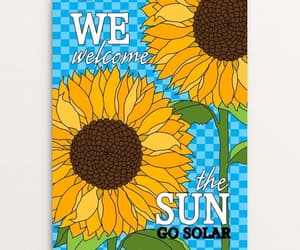 solar, sunflower, and sunflowers image