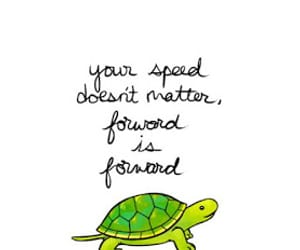 quotes, turtle, and motivation image