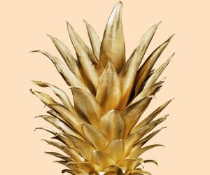 background, pineapple, and gold image
