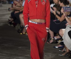 hilfiger and tommy image