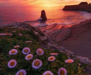 nature, beach, and beautiful image