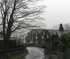 house, street, and tree image