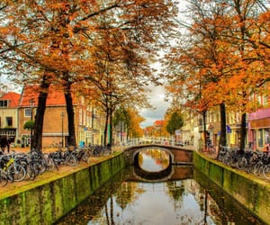 autumn, europe, and outono image