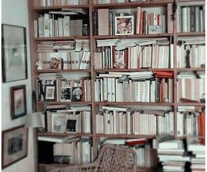 aesthetic, books, and headers image