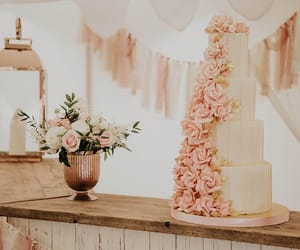 light pink, party, and white image