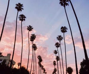 beautiful, la, and paradise image