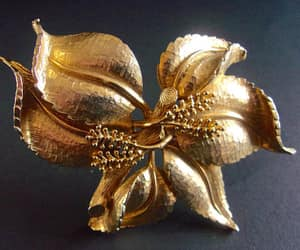 brooch, stems, and gold tone brooch image