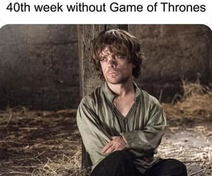 got, tyrion lannister, and gameofthrones image