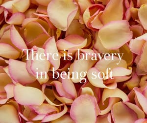 bravery, kindness, and peace image