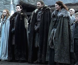 gif, winter is coming, and house stark image