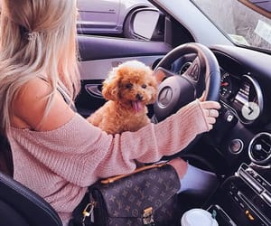 auto, car, and blonde image