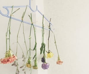 boquet, clothes hanger, and floral image